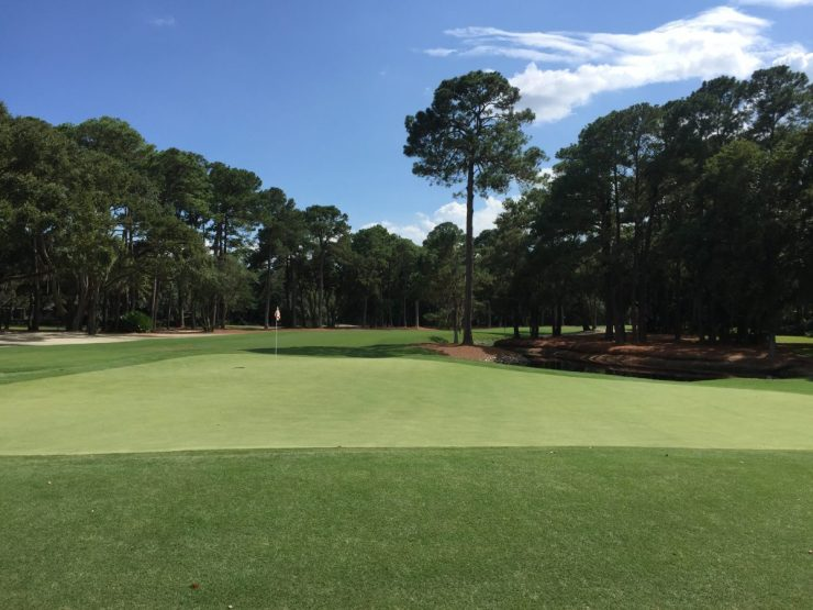 Looking back down the 15th at Harbour Town Links