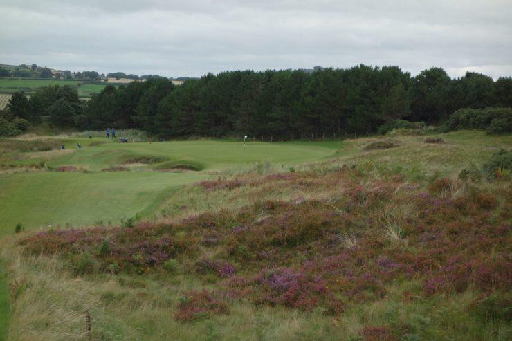 14th green at Royal County Down
