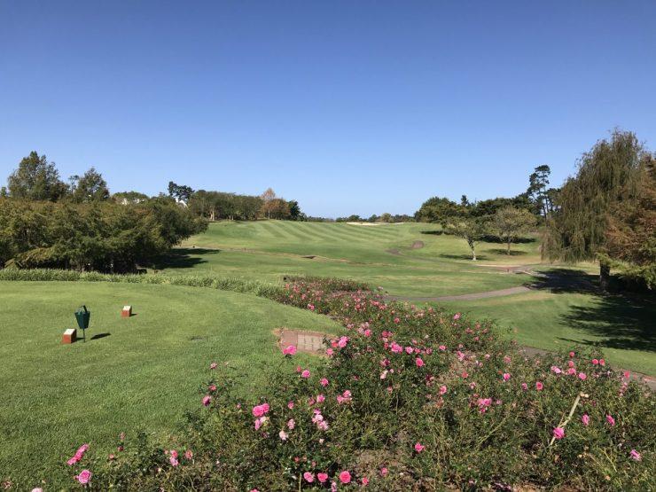 3rd hole at Fancourt Montagu