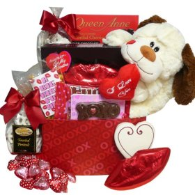 A Big Kiss For You! Plush Puppy Care Package Gift Box – Valentine's Day