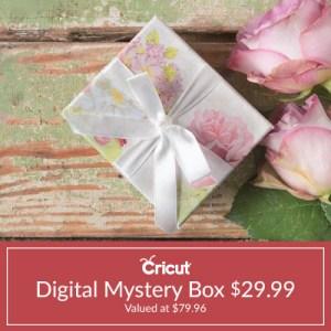 CricutDigitalMysteryBox