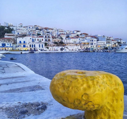 Batsi Andros Port