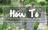 How-to-conserve-water-in-your-lawn