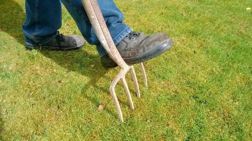 Autumn-Lawn-Care-Tips-1