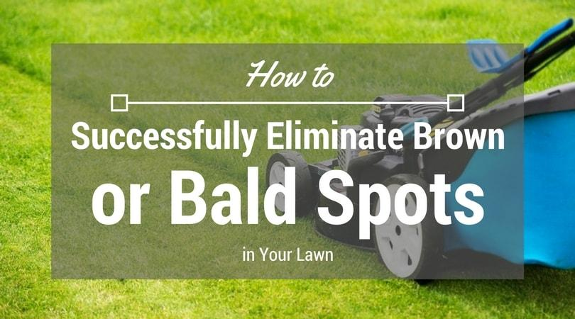 how-to-successfully-eliminate-brown-or-bald-spots-in-your-lawn-1