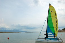 Forge ahead! Hobie Cat Sailing