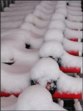 snow covered trolleys