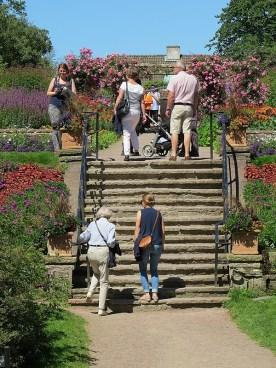 busy gardens
