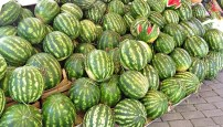 mountains of melons