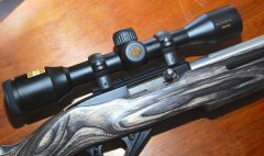 Nikon ProStaff Rimfire 4x32 scope on Ruger 10/22