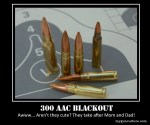 300 AAC Blackout – You Have to Admit, They Take After Mom and Dad…