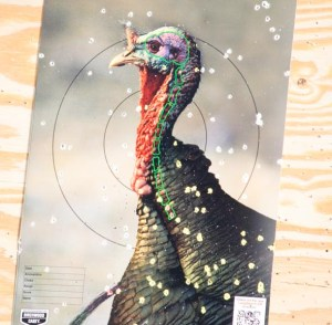 This is a target set at 60 yards. While the point of aim is a bit off the neck and head, note the density of the shot pattern in the body.