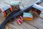 Mad Gun Science: Is Birdshot Effective at Indoor Distances?