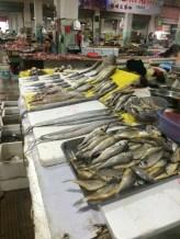 fish market taizhou