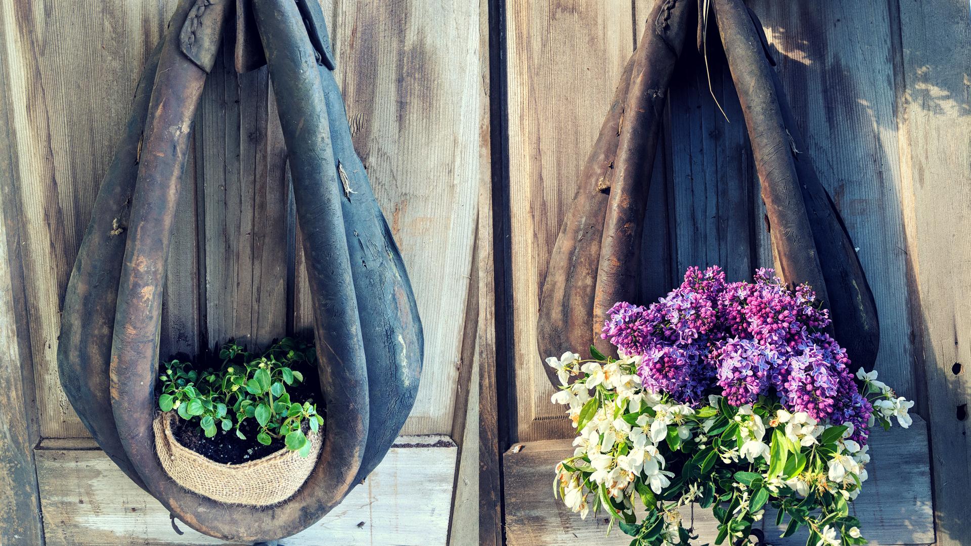 Horse Collar Planter | Rustic and Re-purposed Decor