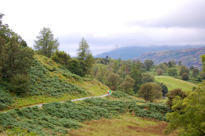 Carrie, AED Student Advisor, visited England in September, 2013. This is one of the paths she hiked through the Lake District in the northwest corner of England.