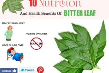 Stubborn Grass: 11 Potential Health Benefits And Side Effects