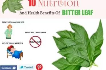 14 Nutrition and health Benefits of Utazi leaf