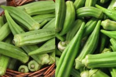10 Nutrition and health Benefits of Utazi leaf
