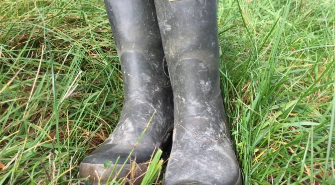 poor quality hunter wellies
