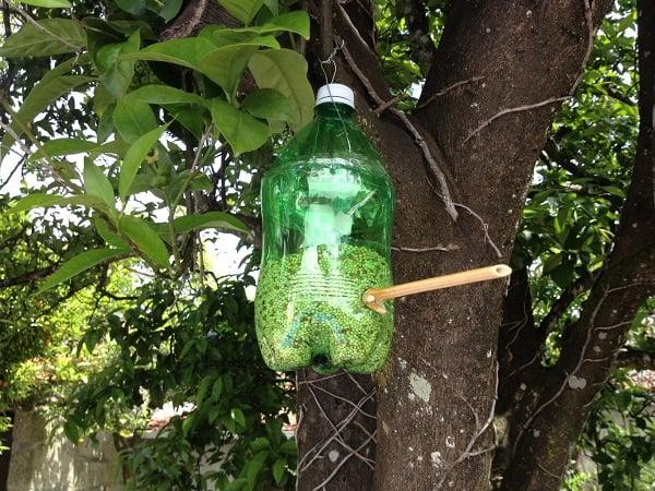 A homemade bird feeder made out of a plastic bottle