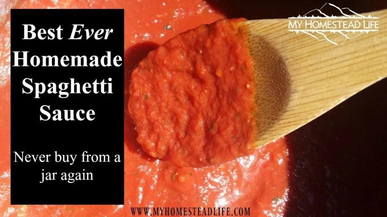Best EVER Homemade Spaghetti Sauce- never buy from a jar again