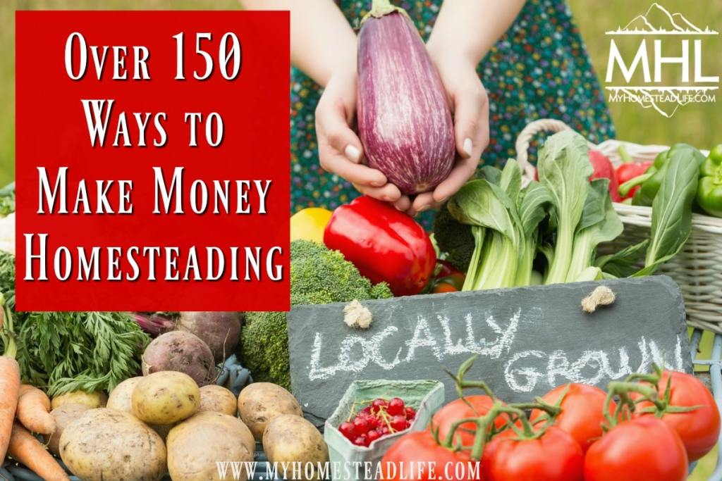 Over 150 Ways to Make Money Homesteading