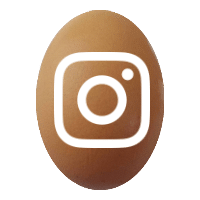 egg instagram 200 MHL