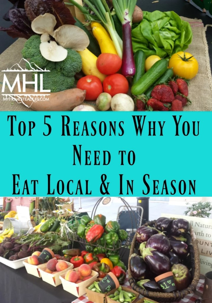 Top 5 Reasons Why You Need to Eat Local & In Season. Let the garden plan your menu.