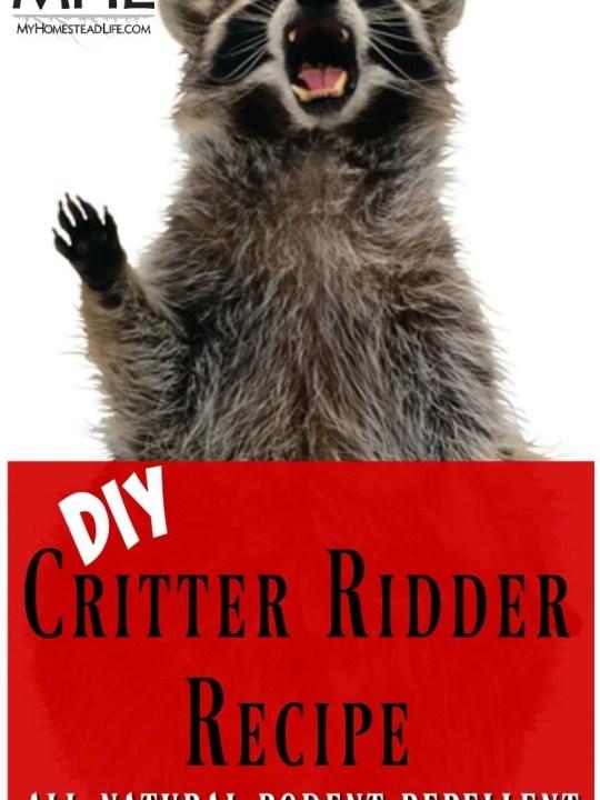DIY Critter Ridder Recipe-Natural Rodent Repellent