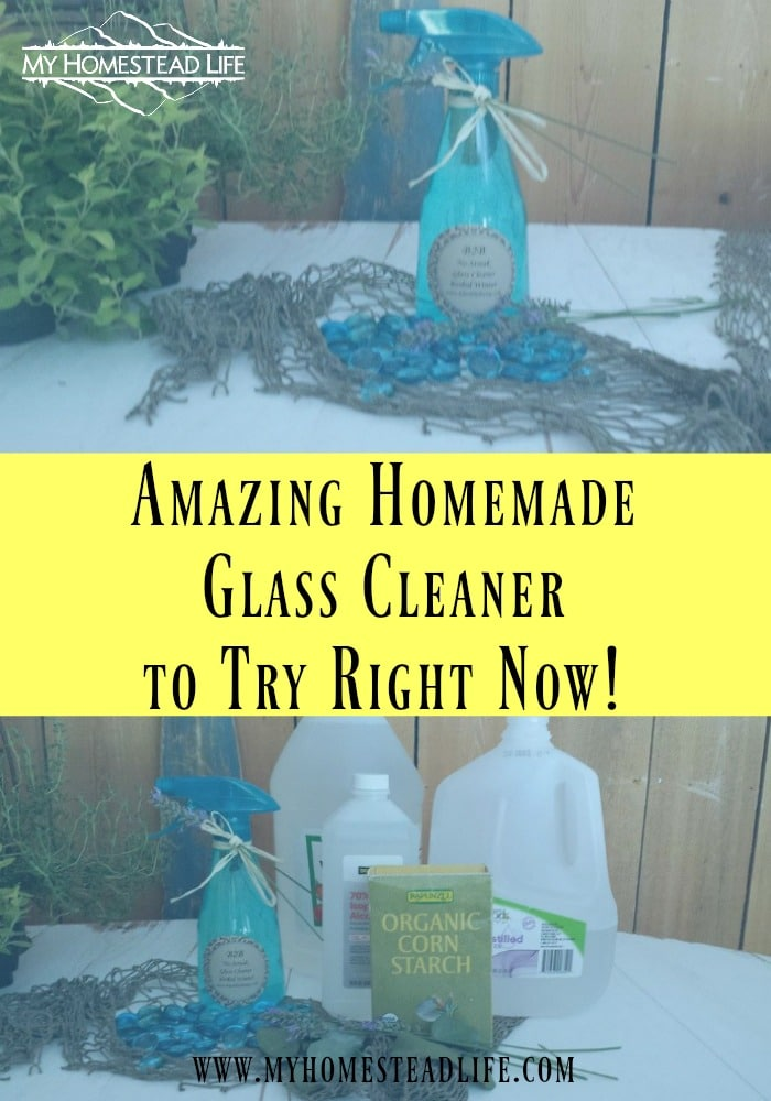 Amazing Homemade Glass Cleaner to Try Right Now!