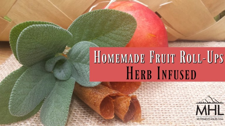 Homemade Fruit Roll-Ups Herb Infused