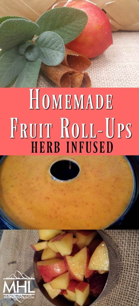 Homemade Fruit Roll-Ups- herb infused. Adults and kids will love them!