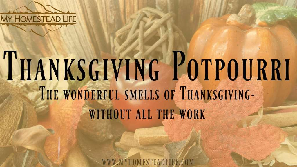 Thanksgiving Potpourri: The wonderful smells of Thanksgiving-without all the work
