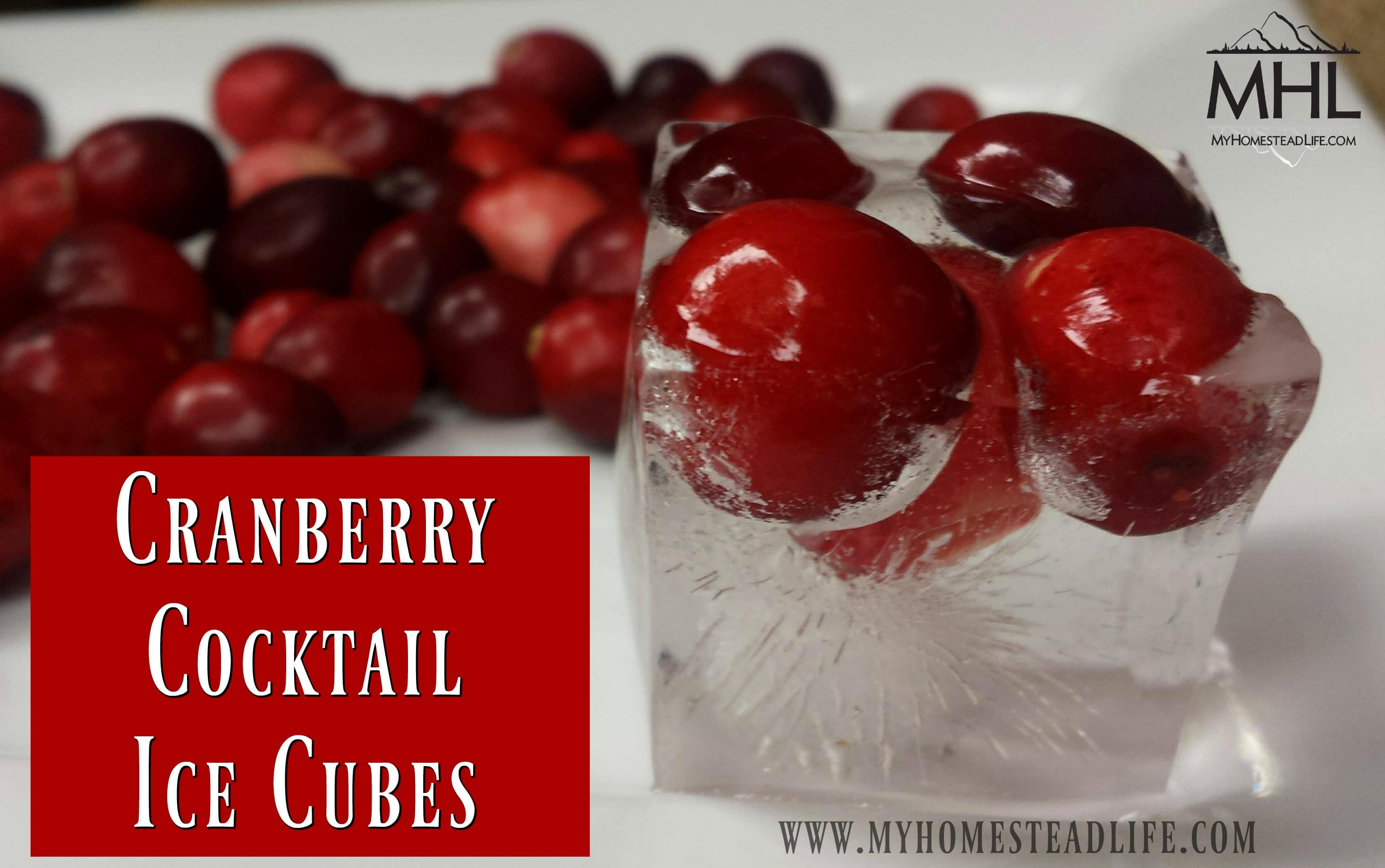 Cranberry Cocktail Ice Cubes, the perfect addition to your Cranberry Spritzer Mocktail