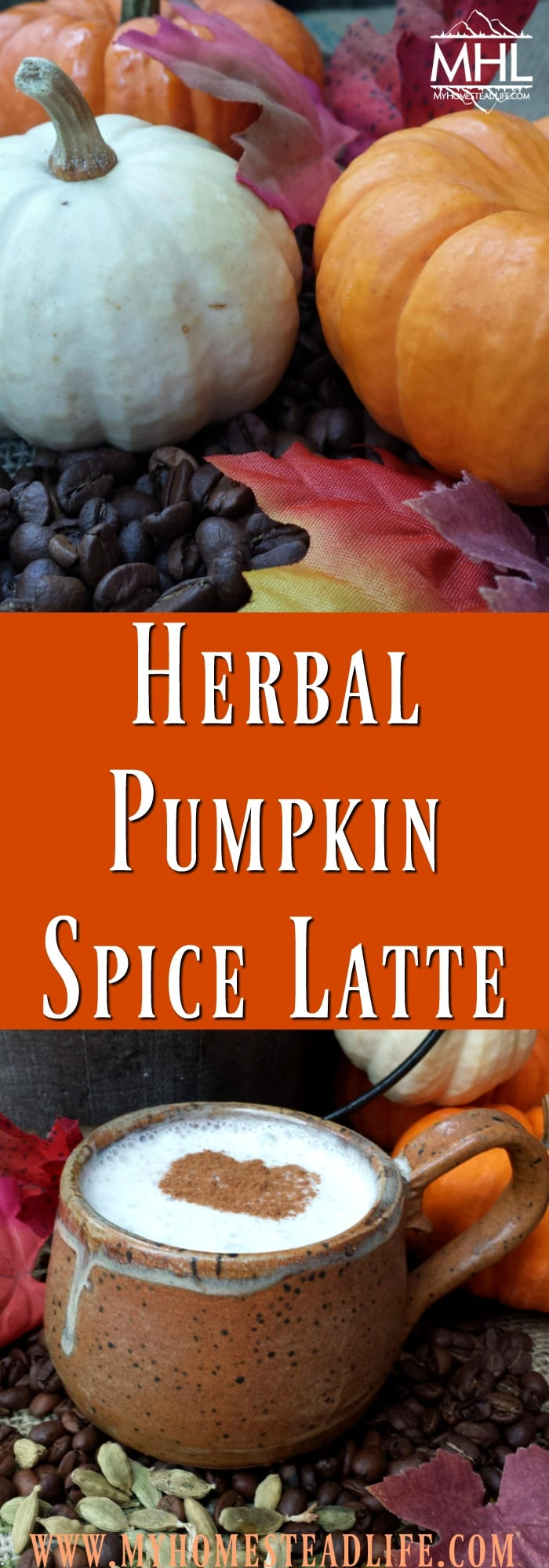 Herbal Pumpkin Spice Latte. If you love coffee and you love fall, then you'll LOVE this recipe!