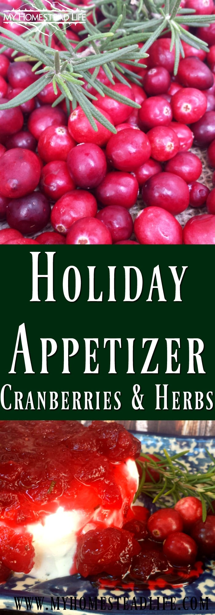 Easy Holiday Appetizer With Fresh Cranberries and Herbs