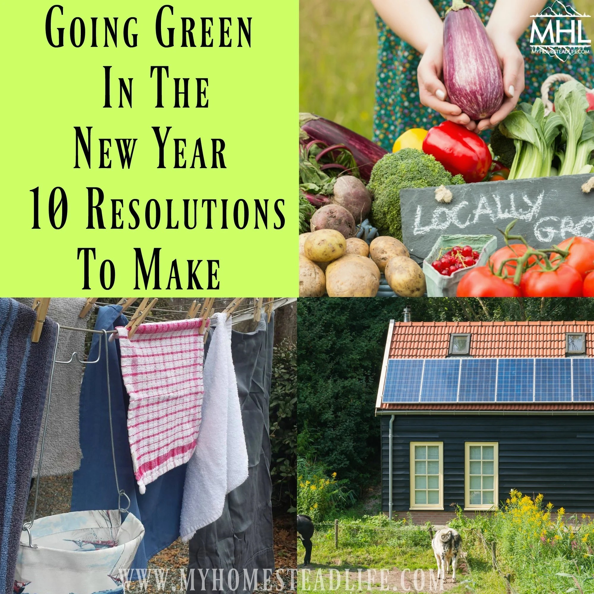 Going Green In The New Year- 10 Resolutions To Make