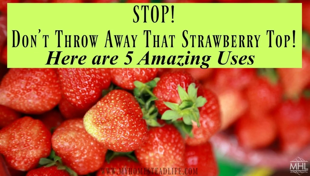 strawberries- strawberry tops- vitamin water- how to remove plaque naturally