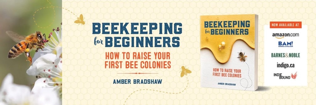 beekeeping-for-beginners-honey-bees