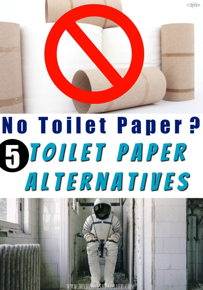 no-toilet-paper