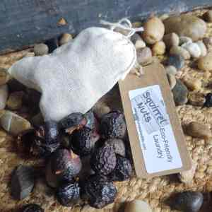 soap-nuts-eco-friendly-laundry-detergent