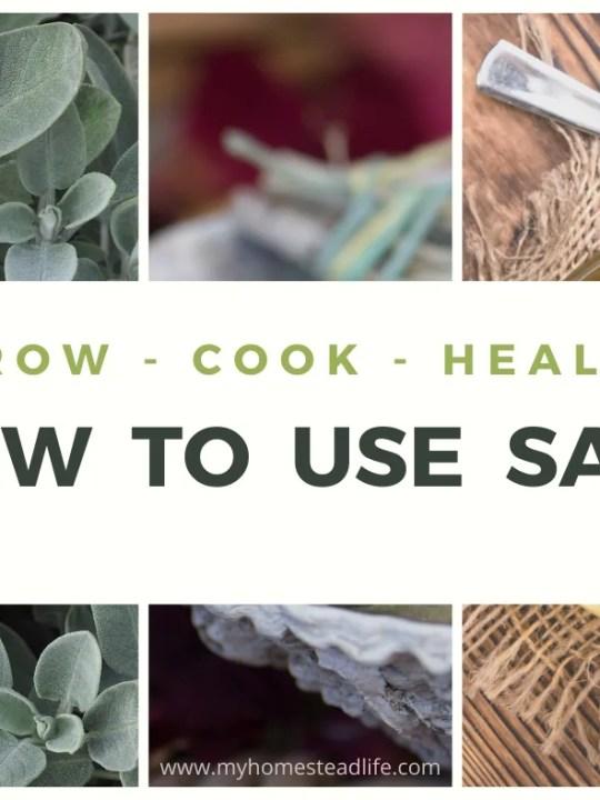 uses-for-sage