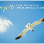 Sunny 16: A Keep It Simple Solution for Outdoor Summer Photography