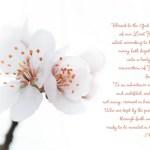 An Easter Scripture: 1 Peter 1:3-5