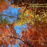 31 Days of Killer Quotes {Day 21}: Psalms 69:30 & A November Desktop Calendar