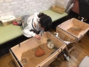 樽を半分に切った容器内にいるハリネズミと触れ合う小学生の女の子