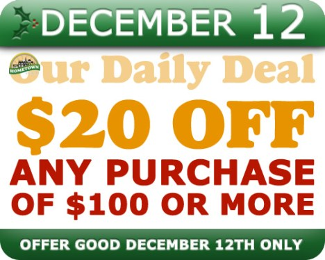 Hometown Bicycles Daily Deal December 12