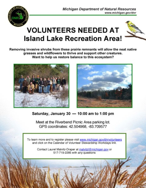 Island Lake Clean-Up flier for 1/30/16