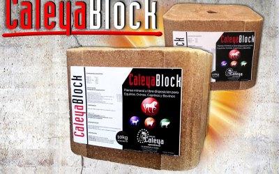 Bloque de minerales CaleyaBlock